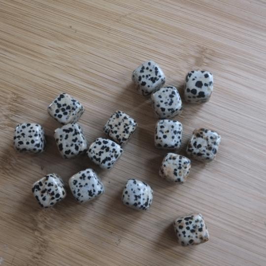 pierre dalmatien