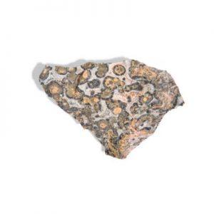 jaspe peau de léopard brute