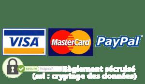 logo paypal carte bleue