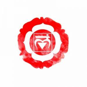 chakra racine rouge